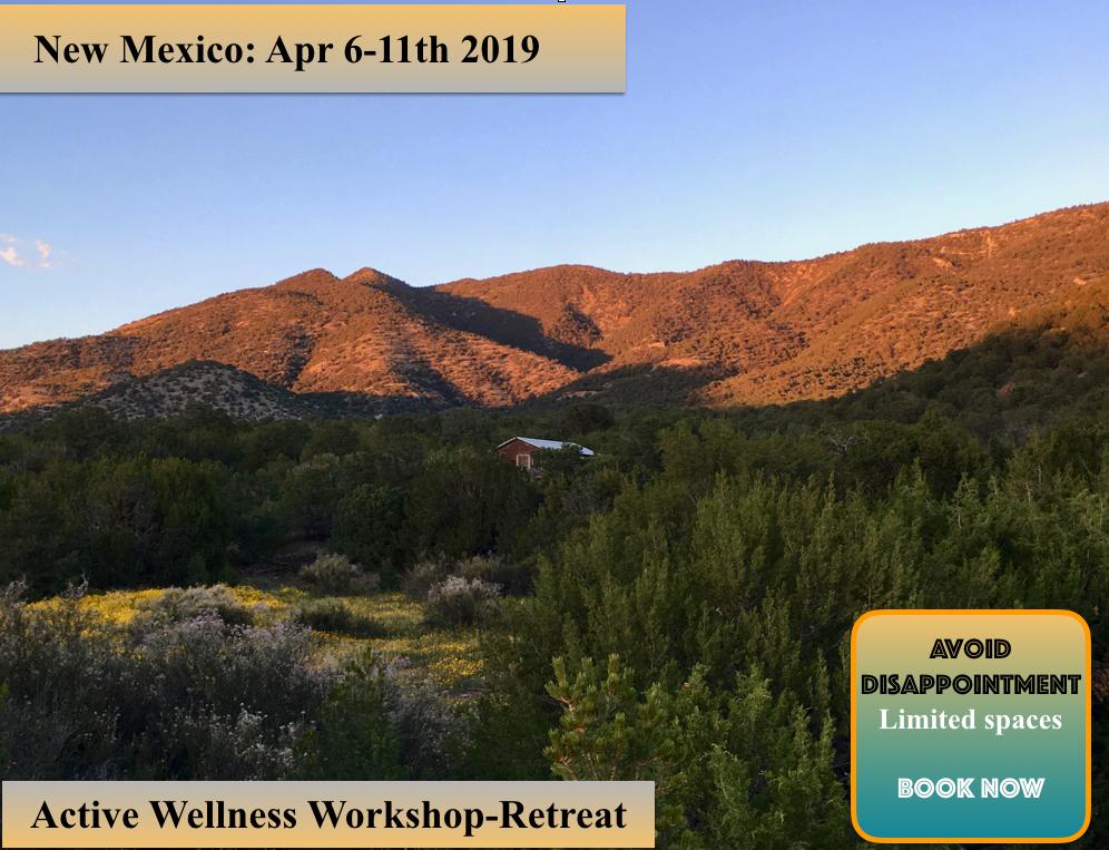 health and wellness retreat