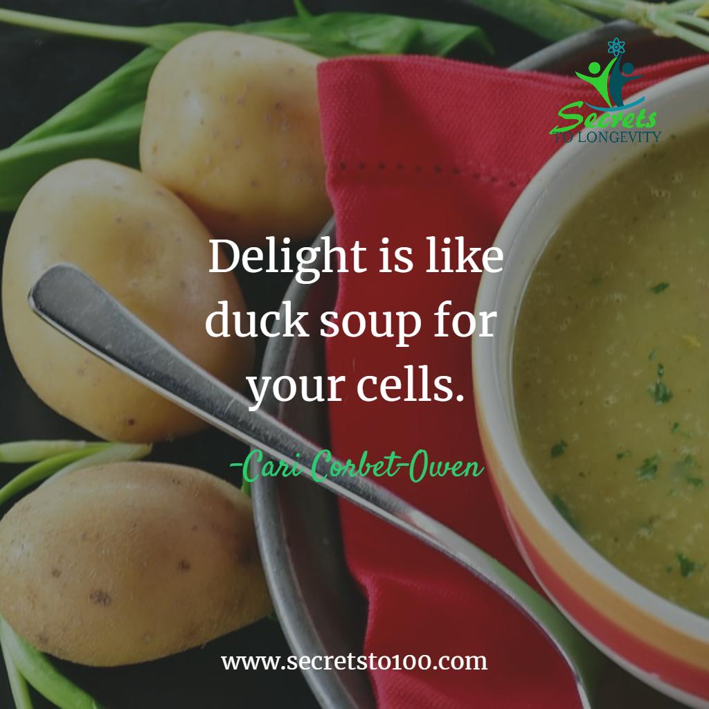 Longevity Duck Soup