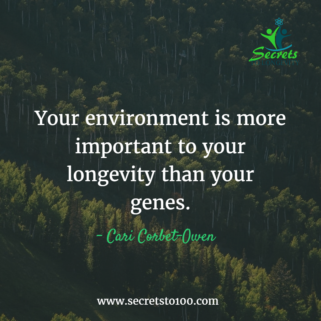 Environment Longevity Lifestyle